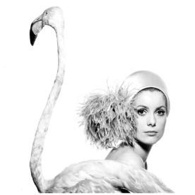 Catherine Deneuve, Vogue January 11, 1968 by David Bailey.